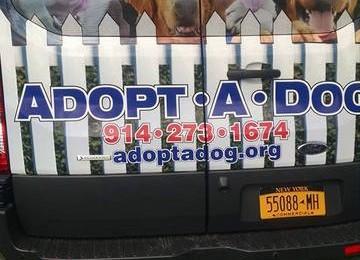 Adopt a Dog 2015
