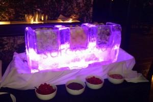 Purple Ice Sculpure Bar 2016