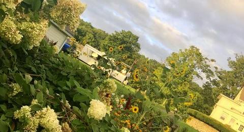 Flowers Candlelight Farm Inn 2018